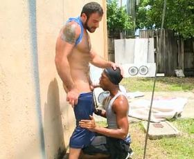 Gay ebony gangster sucking a white cock